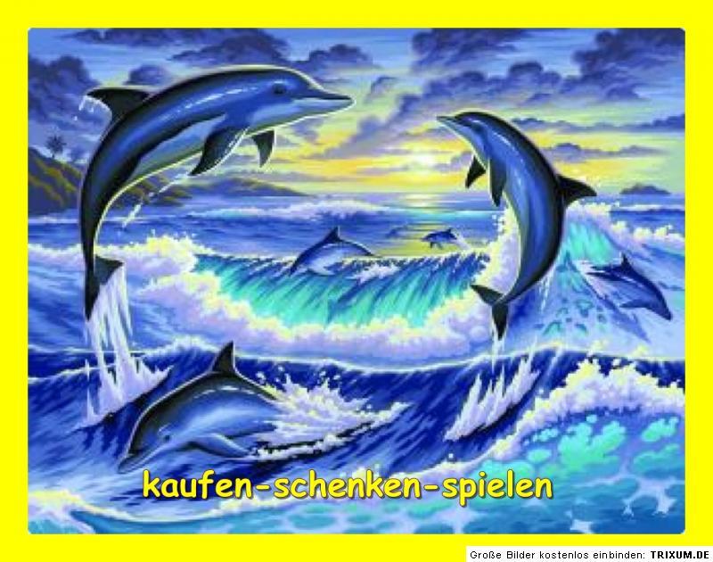 malen nach zahlen delfine im meer delfin gr e 39 cm x 30. Black Bedroom Furniture Sets. Home Design Ideas